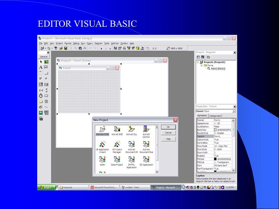 EDITOR VISUAL BASIC