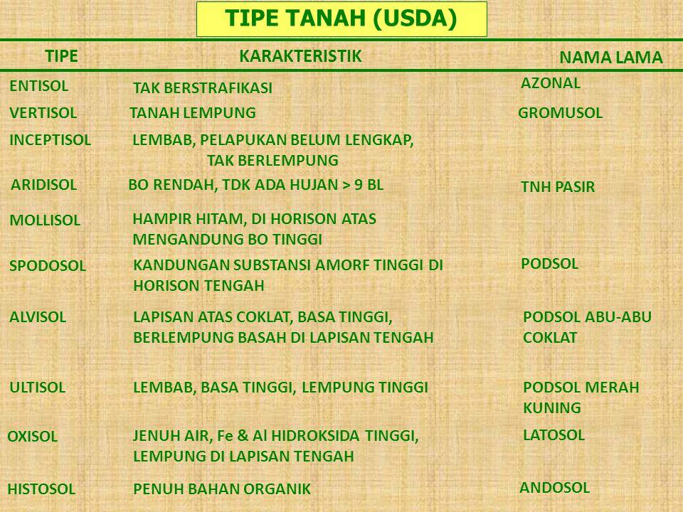 TIPE TANAH (USDA) TIPE KARAKTERISTIK NAMA LAMA ENTISOL