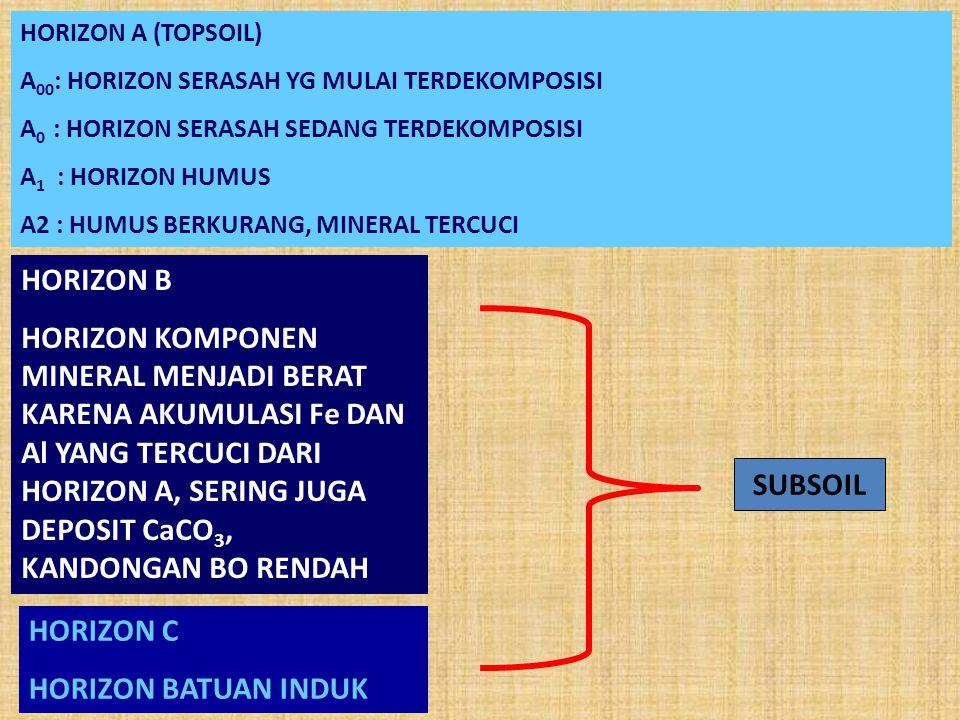 HORIZON A (TOPSOIL) A00: HORIZON SERASAH YG MULAI TERDEKOMPOSISI. A0 : HORIZON SERASAH SEDANG TERDEKOMPOSISI.