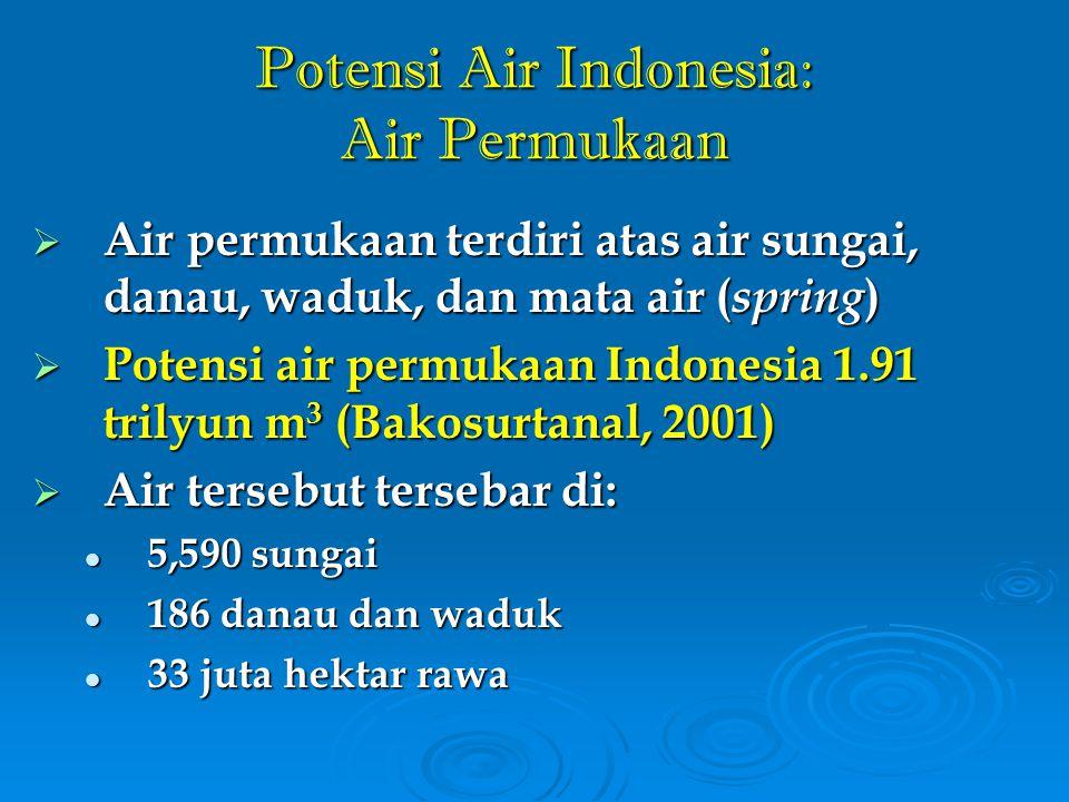 Potensi Air Indonesia: Air Permukaan
