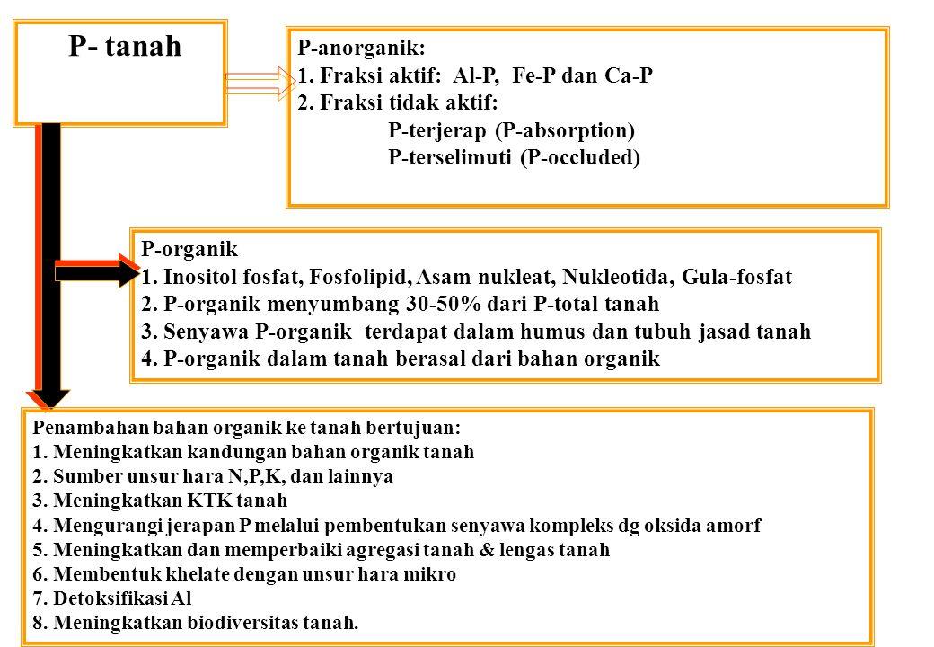 P- tanah P-anorganik: 1. Fraksi aktif: Al-P, Fe-P dan Ca-P