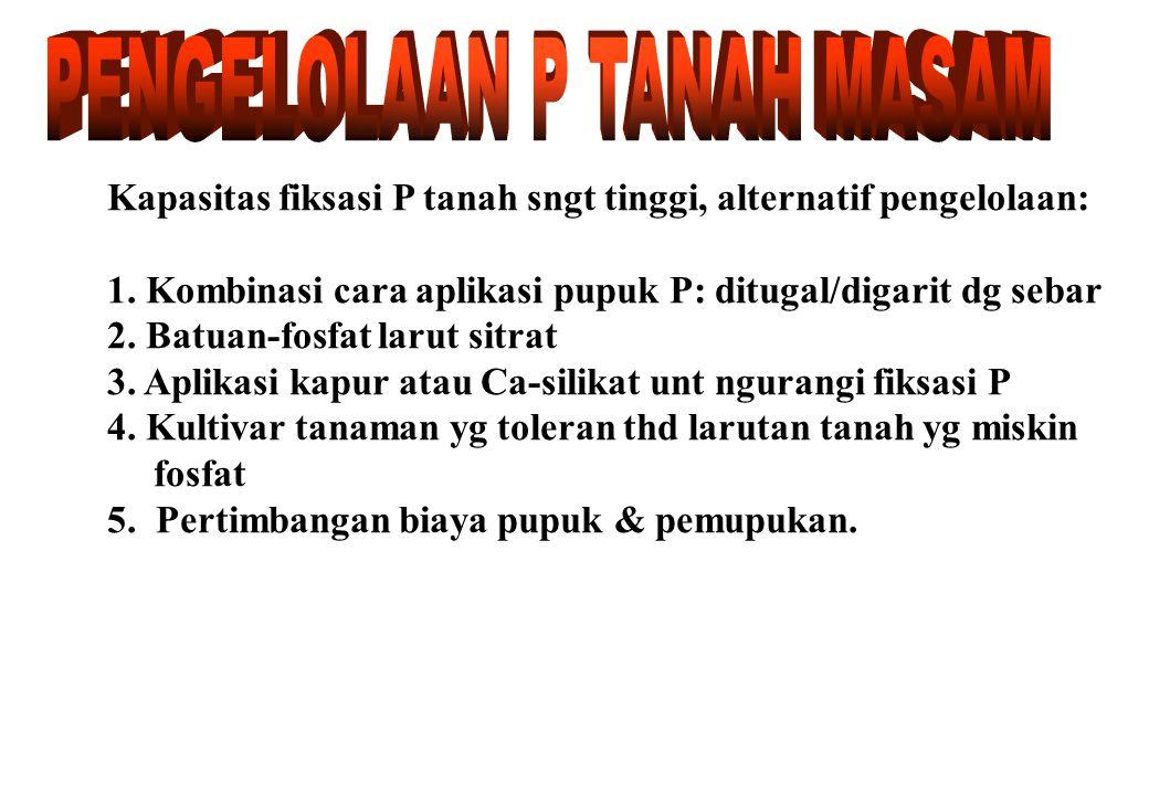 PENGELOLAAN P TANAH MASAM