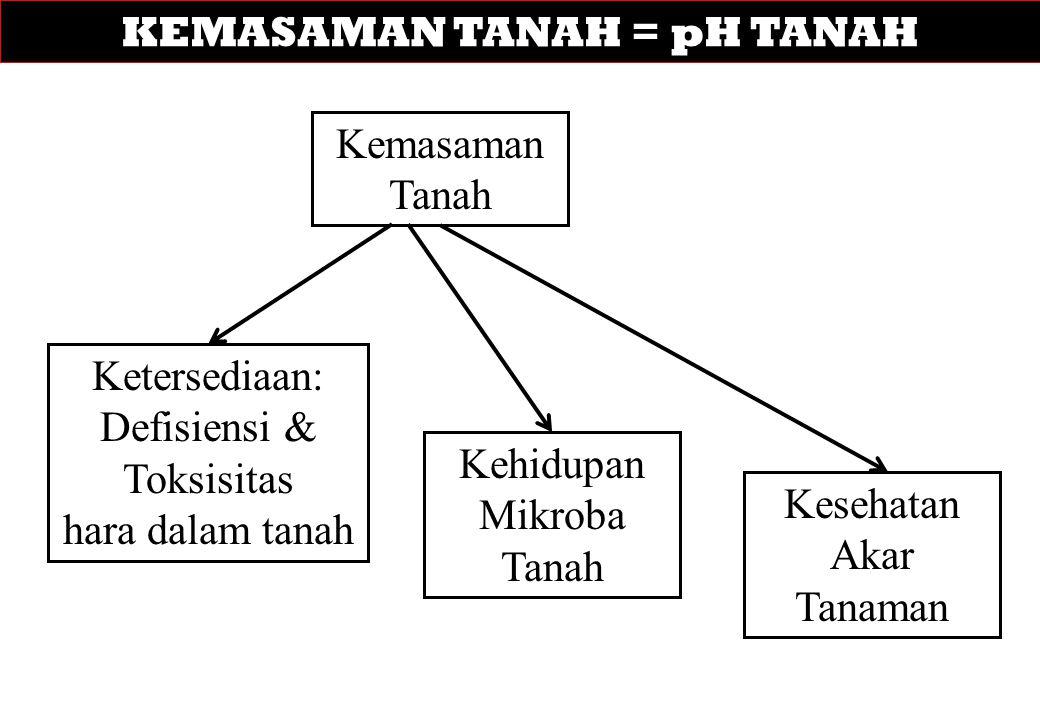 KEMASAMAN TANAH = pH TANAH