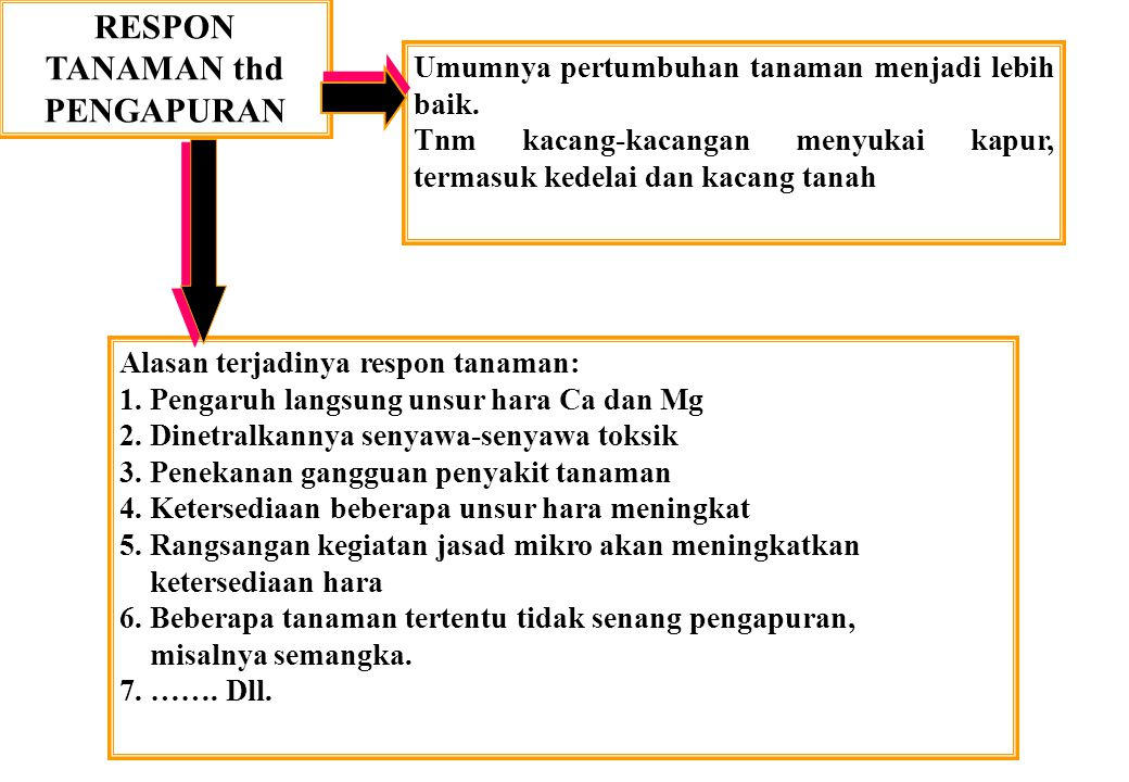 RESPON TANAMAN thd PENGAPURAN