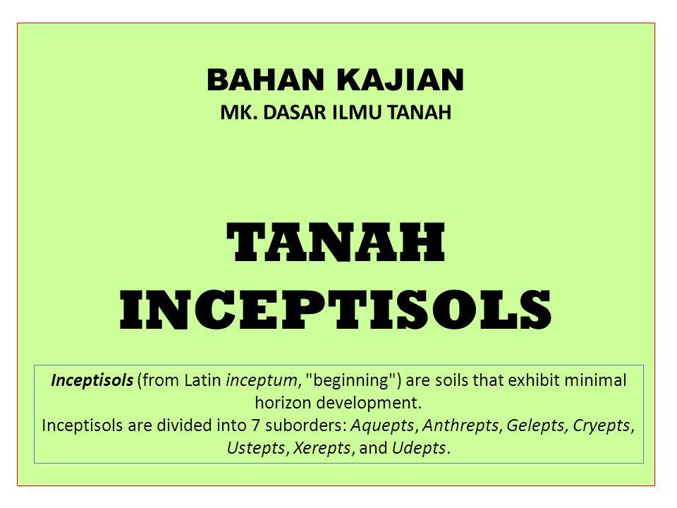 TANAH INCEPTISOLS BAHAN KAJIAN MK. DASAR ILMU TANAH
