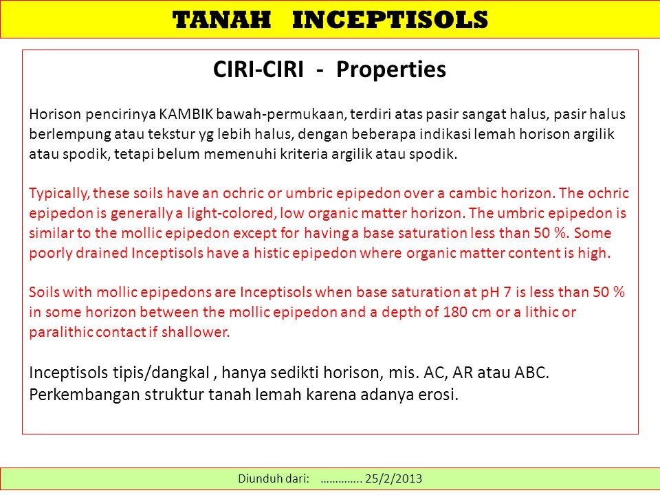 CIRI-CIRI - Properties