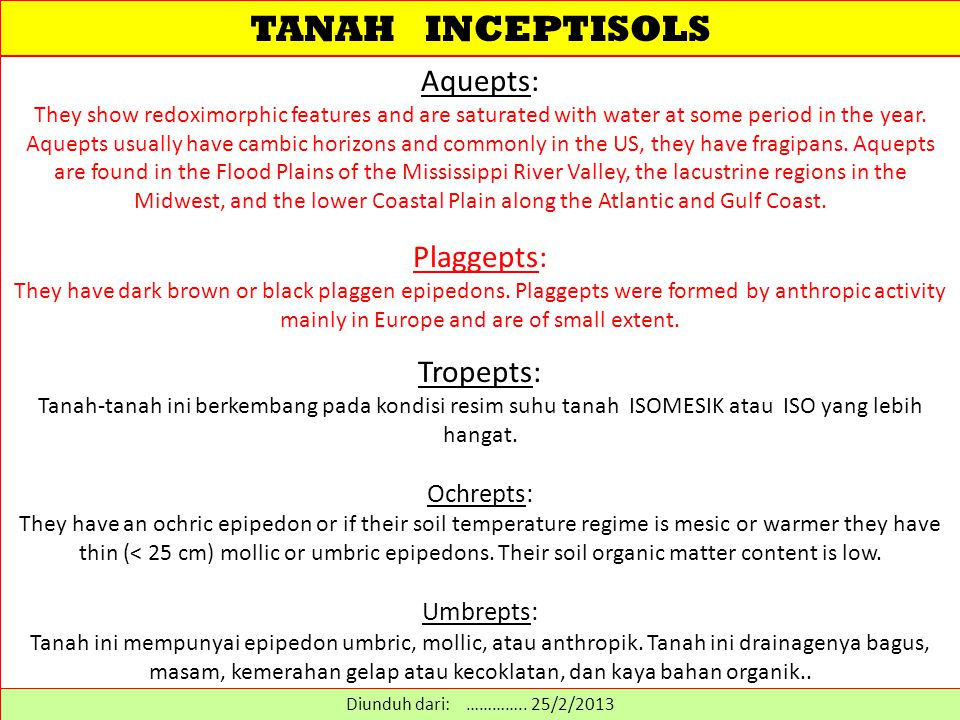 TANAH INCEPTISOLS Aquepts: Plaggepts: Tropepts: Ochrepts: Umbrepts: