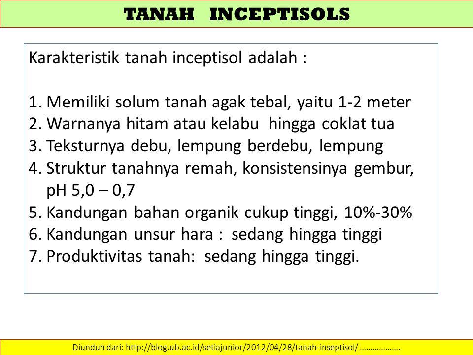 Karakteristik tanah inceptisol adalah :