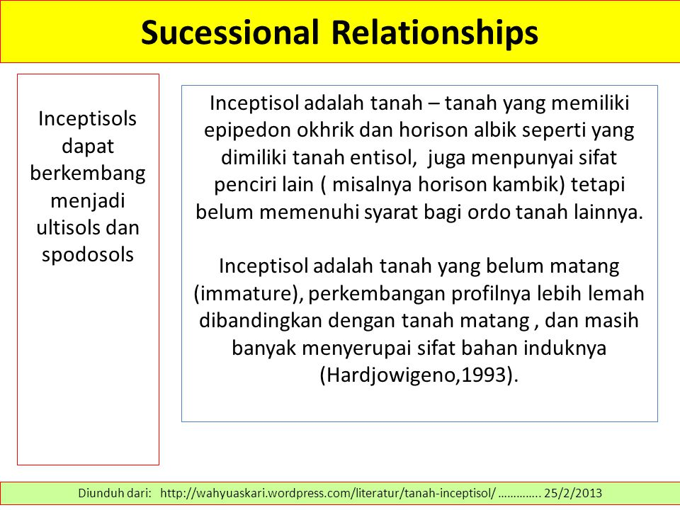 Sucessional Relationships