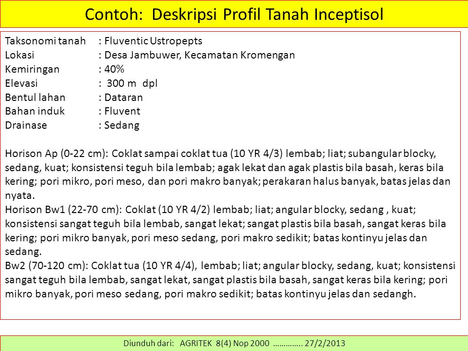 Contoh: Deskripsi Profil Tanah Inceptisol