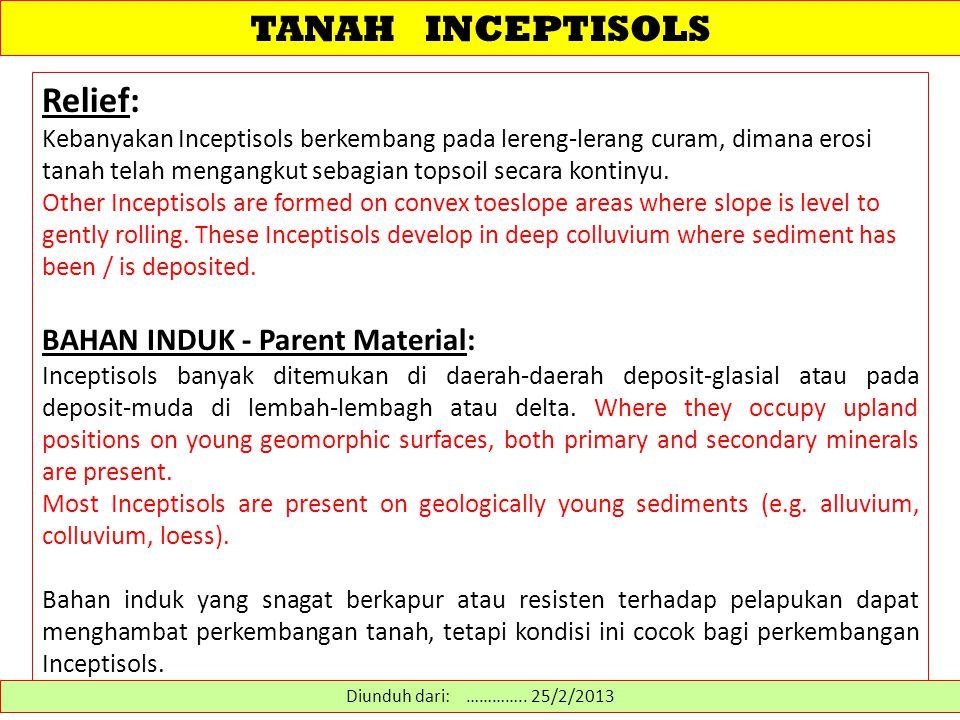 TANAH INCEPTISOLS Relief: BAHAN INDUK - Parent Material:
