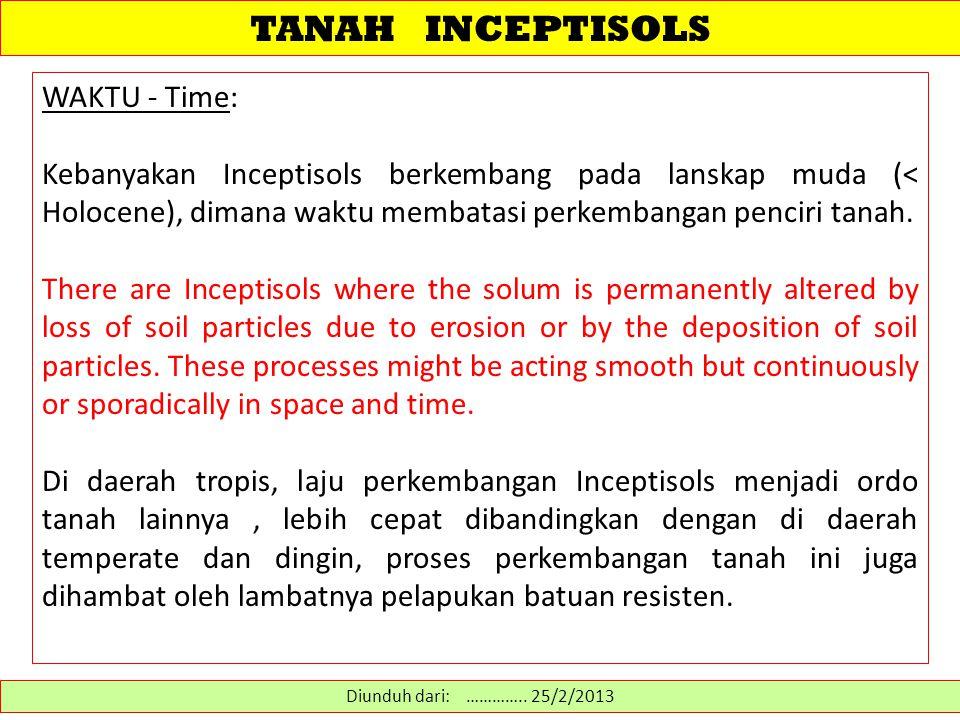 TANAH INCEPTISOLS WAKTU - Time: