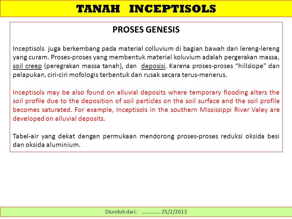 TANAH INCEPTISOLS PROSES GENESIS