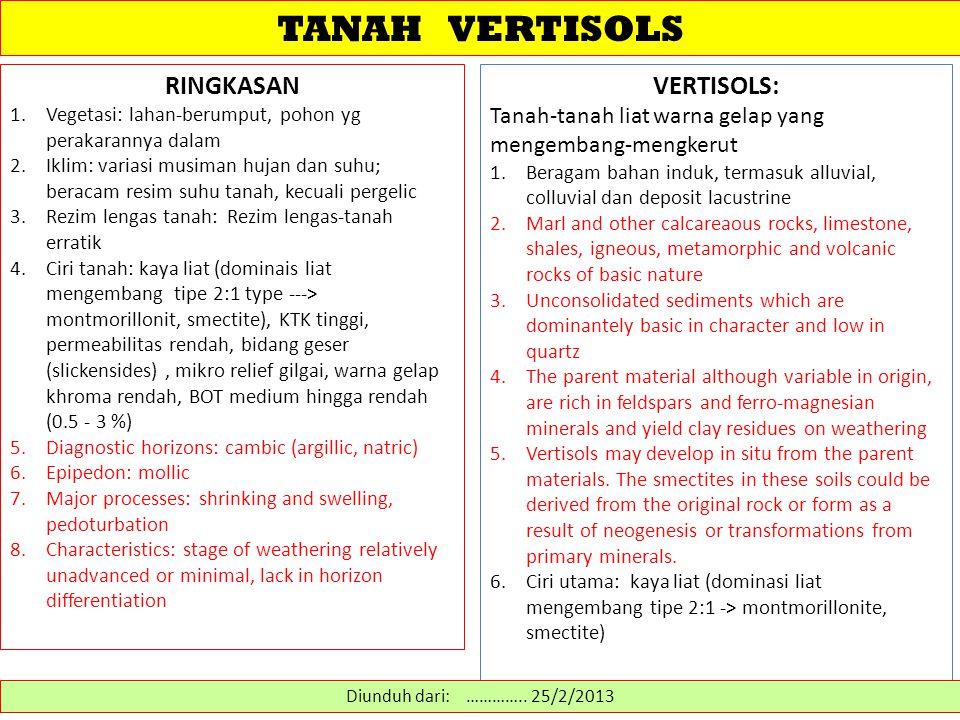 TANAH VERTISOLS RINGKASAN VERTISOLS: