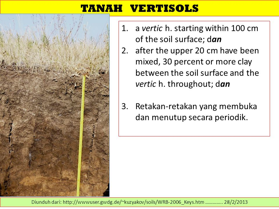 TANAH VERTISOLS a vertic h. starting within 100 cm of the soil surface; dan.