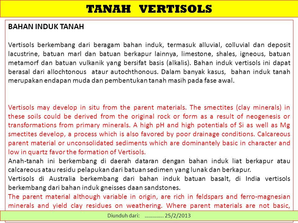 TANAH VERTISOLS BAHAN INDUK TANAH