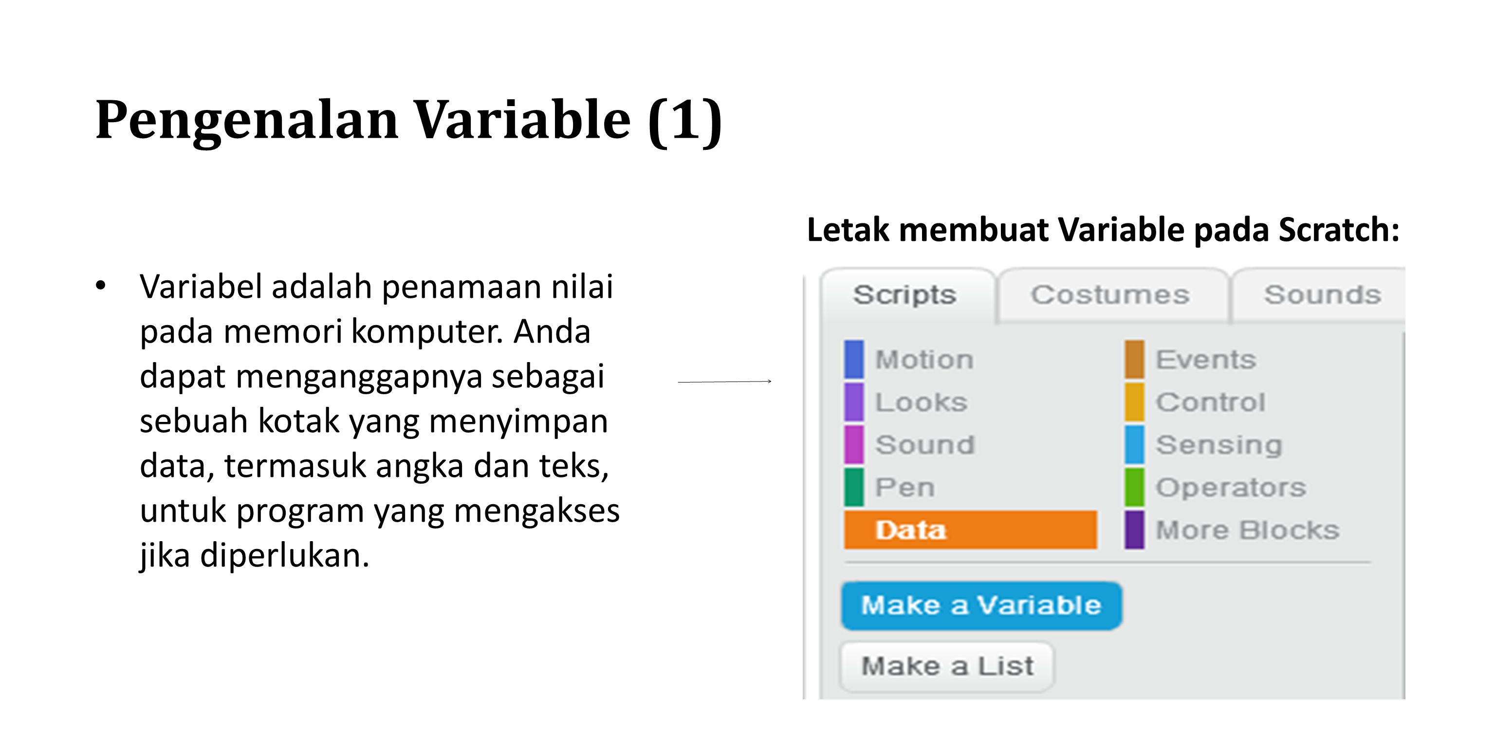 Pengenalan Variable (1)