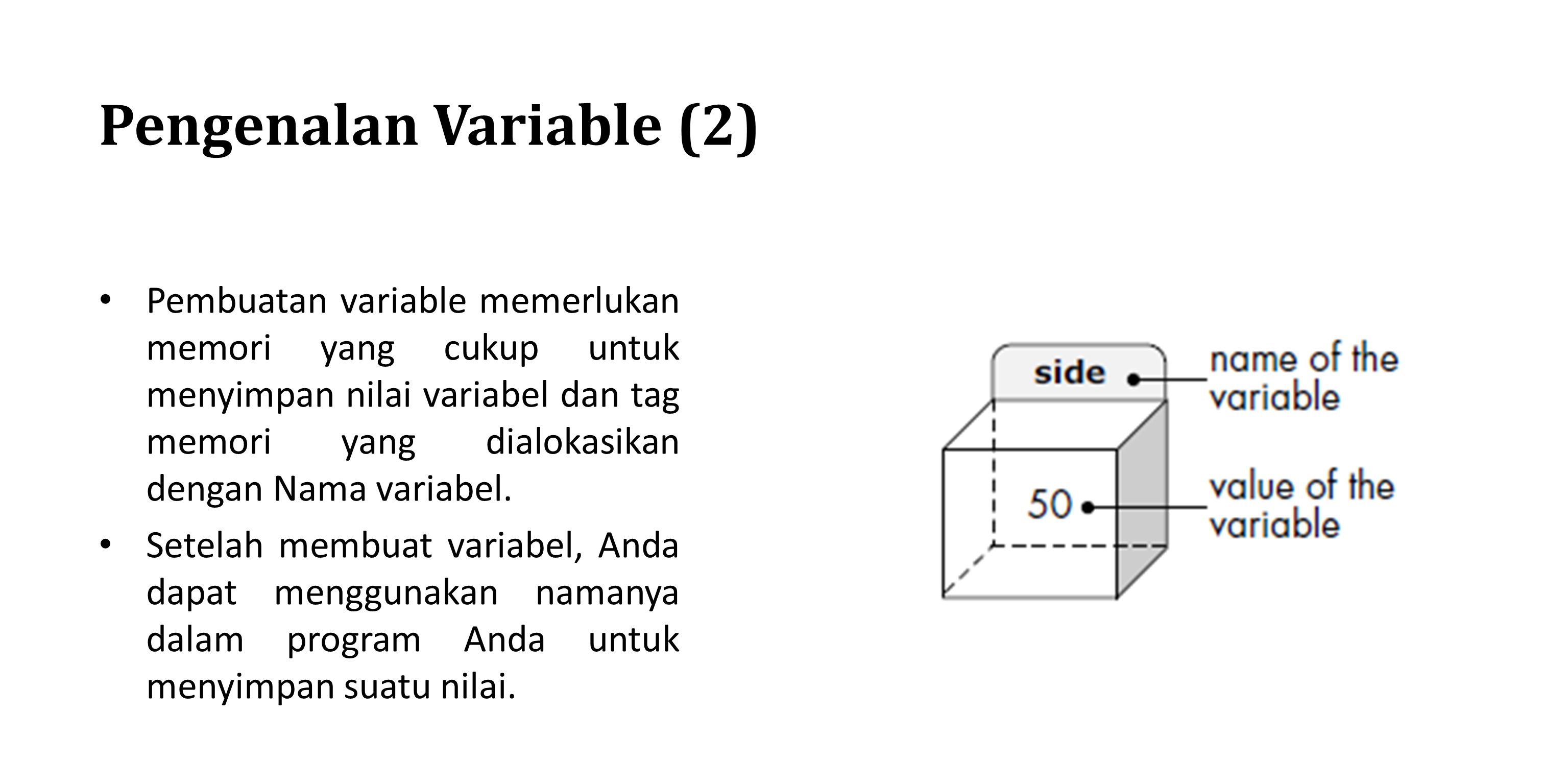 Pengenalan Variable (2)