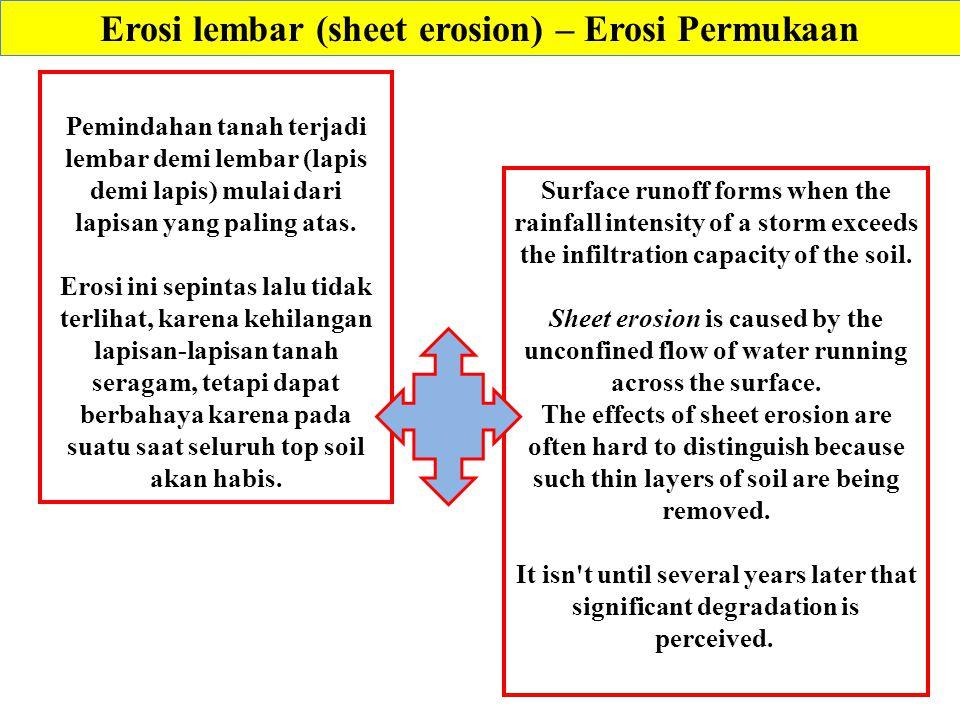 Erosi lembar (sheet erosion) – Erosi Permukaan