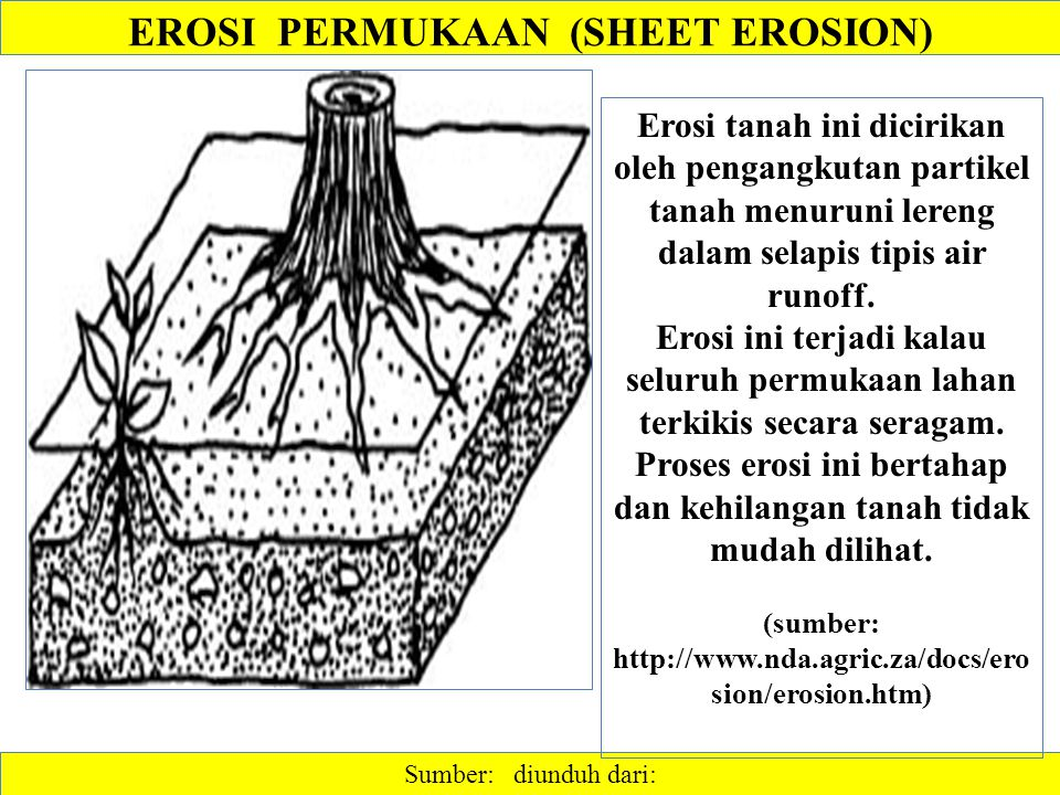 EROSI PERMUKAAN (SHEET EROSION)
