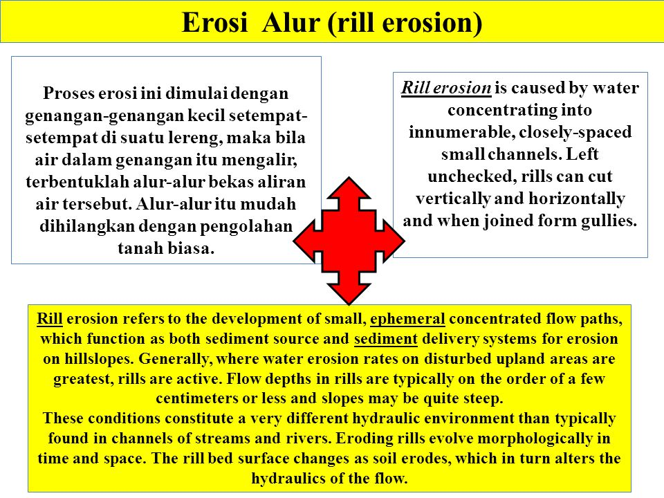 Erosi Alur (rill erosion)
