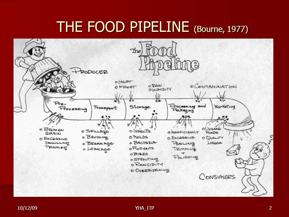 THE FOOD PIPELINE (Bourne, 1977)