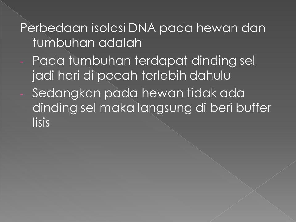 Perbedaan isolasi DNA pada hewan dan tumbuhan adalah