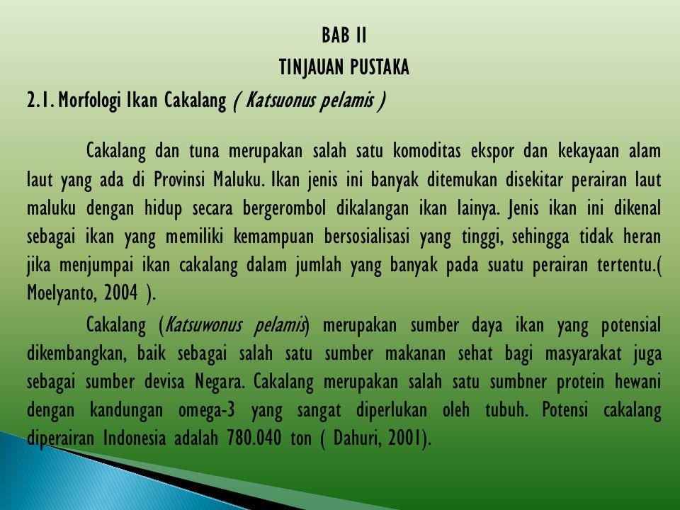 BAB II TINJAUAN PUSTAKA. 2.1. Morfologi Ikan Cakalang ( Katsuonus pelamis )