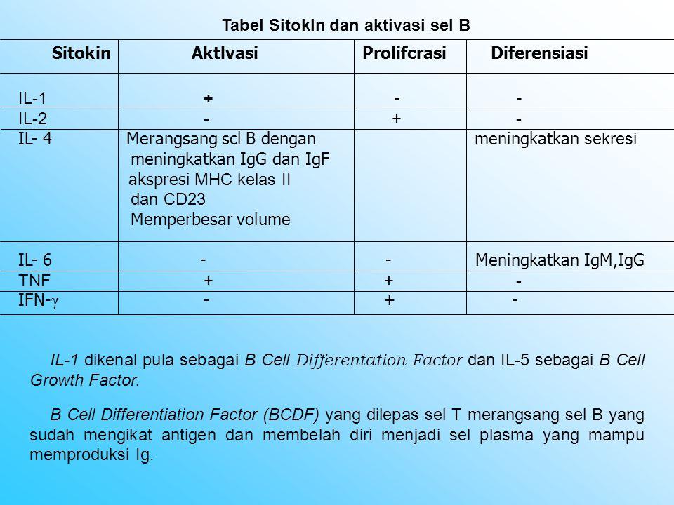 Tabel Sitokln dan aktivasi sel B