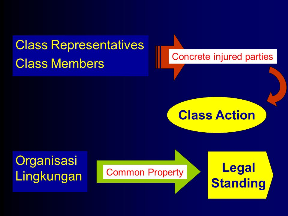 Class Action Legal Standing