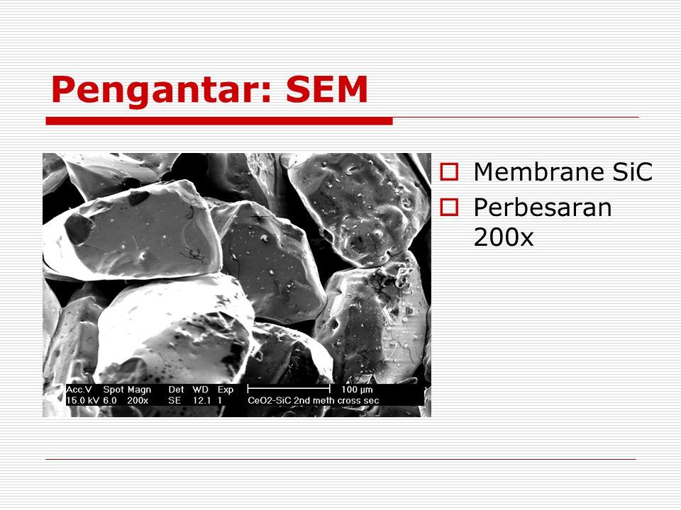Pengantar: SEM Membrane SiC Perbesaran 200x