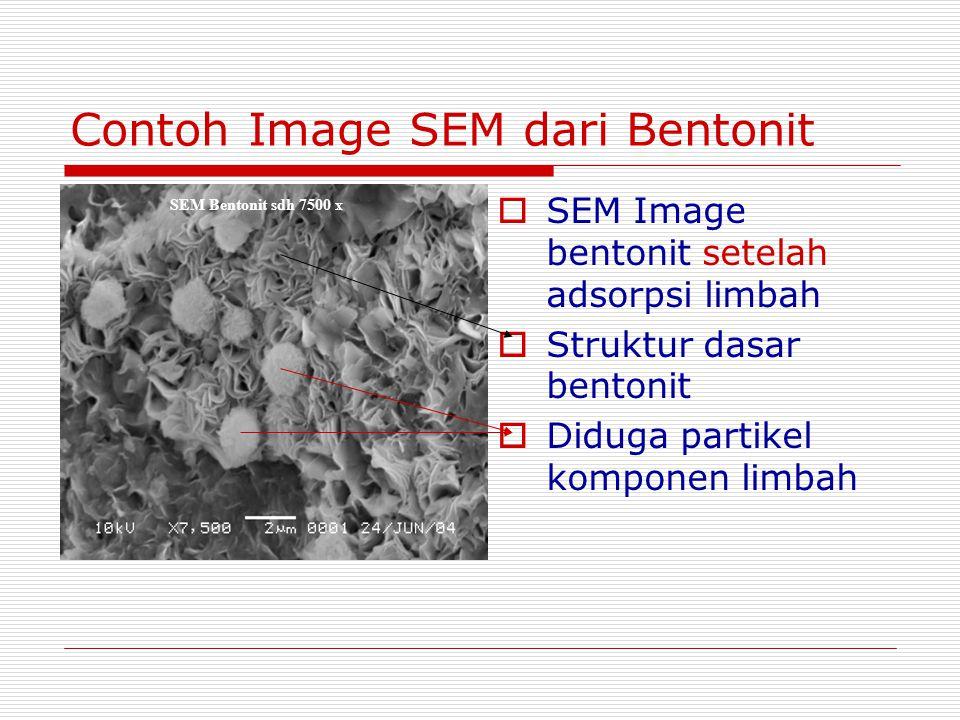 Contoh Image SEM dari Bentonit