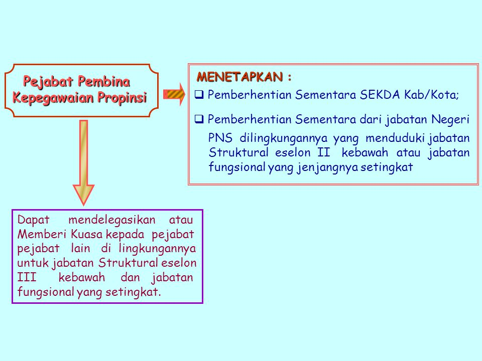 Pejabat Pembina Kepegawaian Propinsi