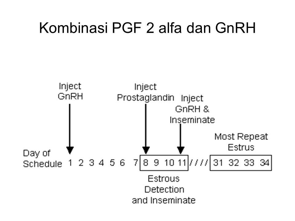Kombinasi PGF 2 alfa dan GnRH