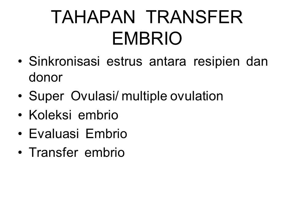 TAHAPAN TRANSFER EMBRIO