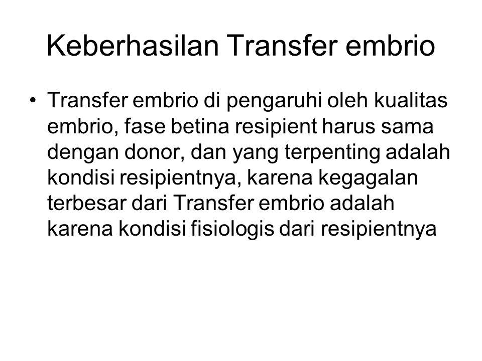 Keberhasilan Transfer embrio