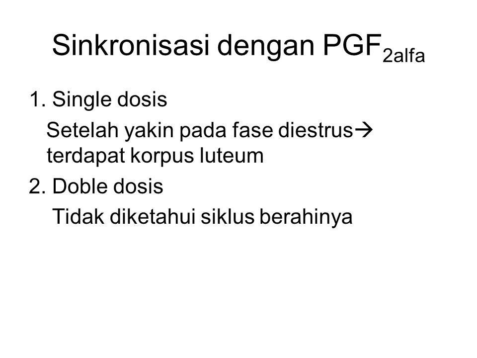 Sinkronisasi dengan PGF2alfa