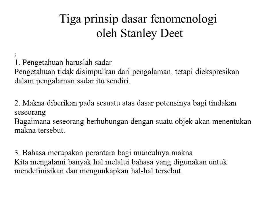 Tiga prinsip dasar fenomenologi oleh Stanley Deet
