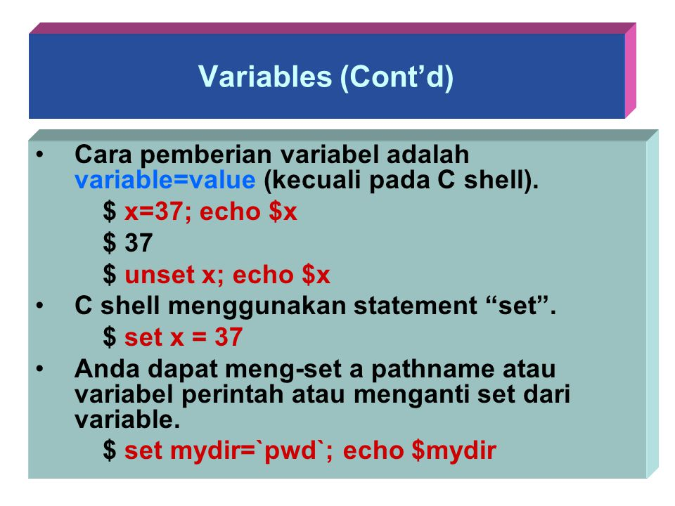 Variables (Cont'd) Cara pemberian variabel adalah variable=value (kecuali pada C shell). $ x=37; echo $x.