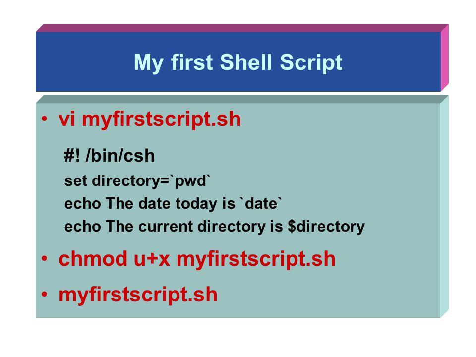 My first Shell Script vi myfirstscript.sh #! /bin/csh