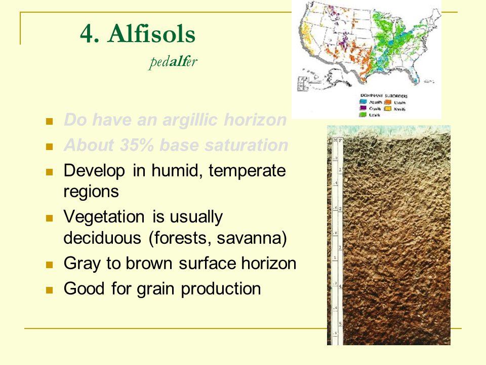 4. Alfisols pedalfer Do have an argillic horizon