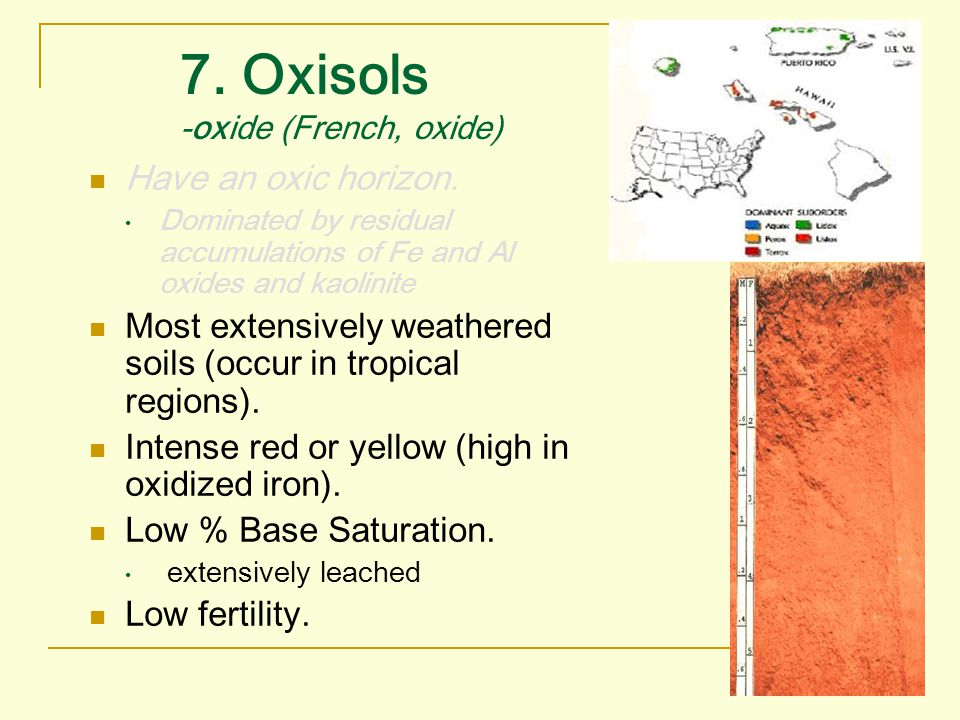7. Oxisols -oxide (French, oxide)