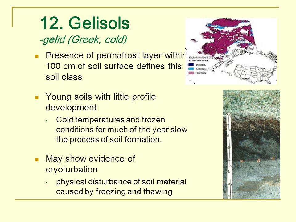 12. Gelisols -gelid (Greek, cold)