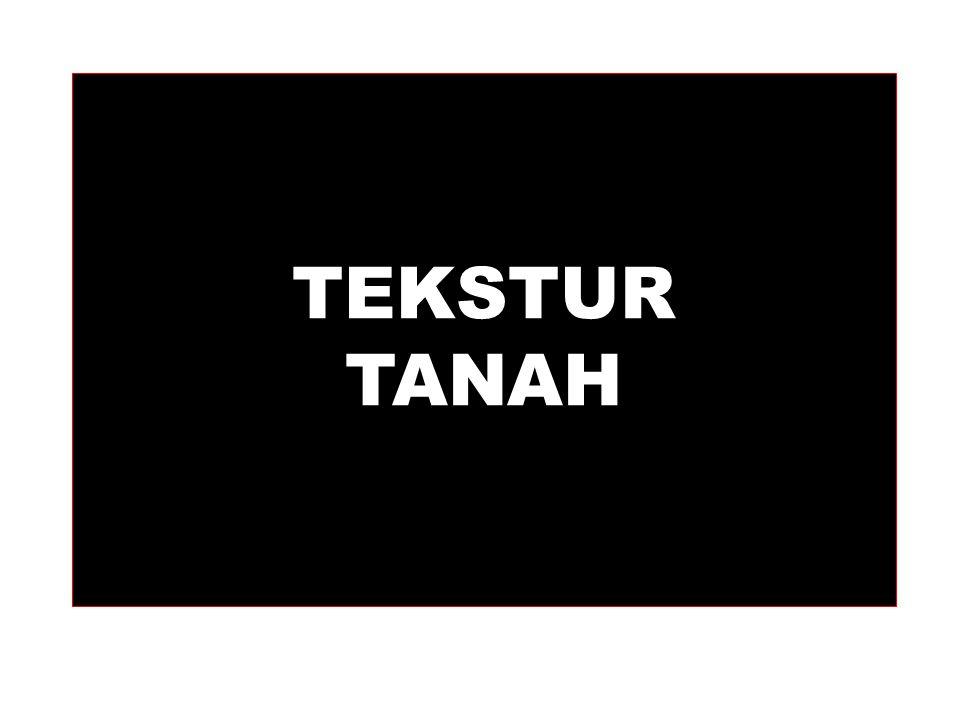 TEKSTUR TANAH