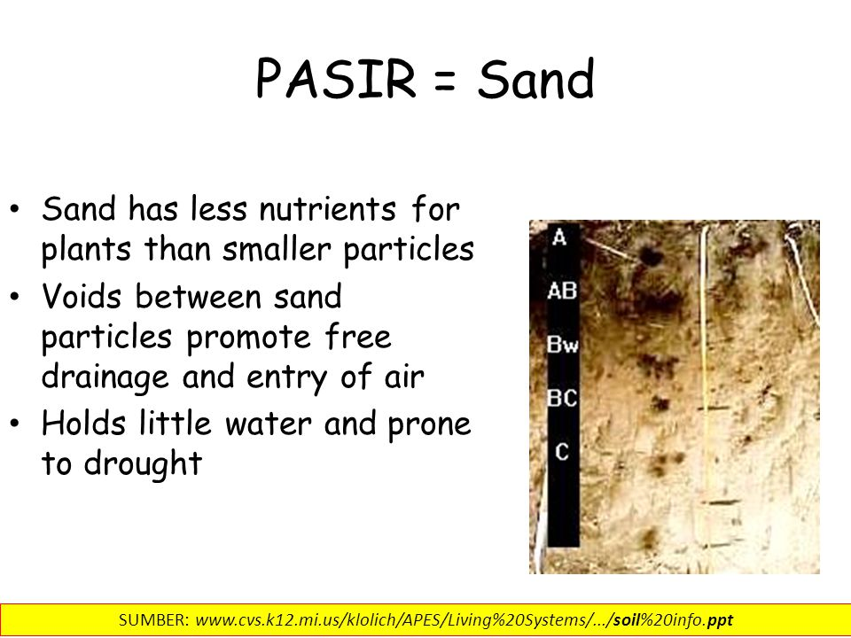 PASIR = Sand Sand has less nutrients for plants than smaller particles