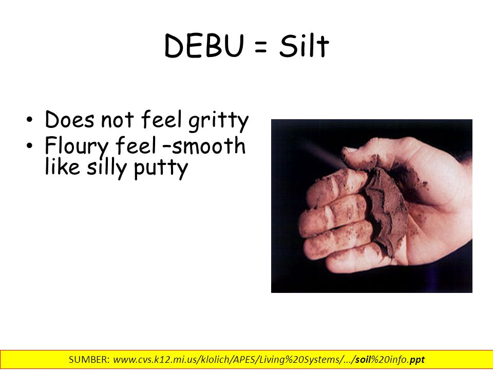 DEBU = Silt Does not feel gritty Floury feel –smooth like silly putty