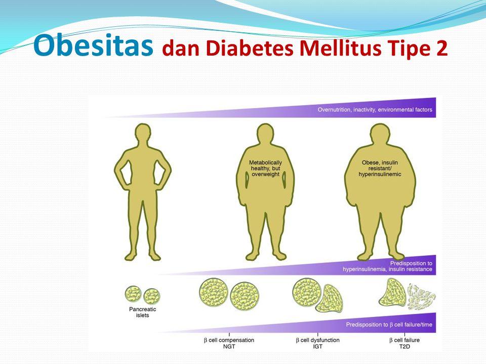 Obesitas dan Diabetes Mellitus Tipe 2