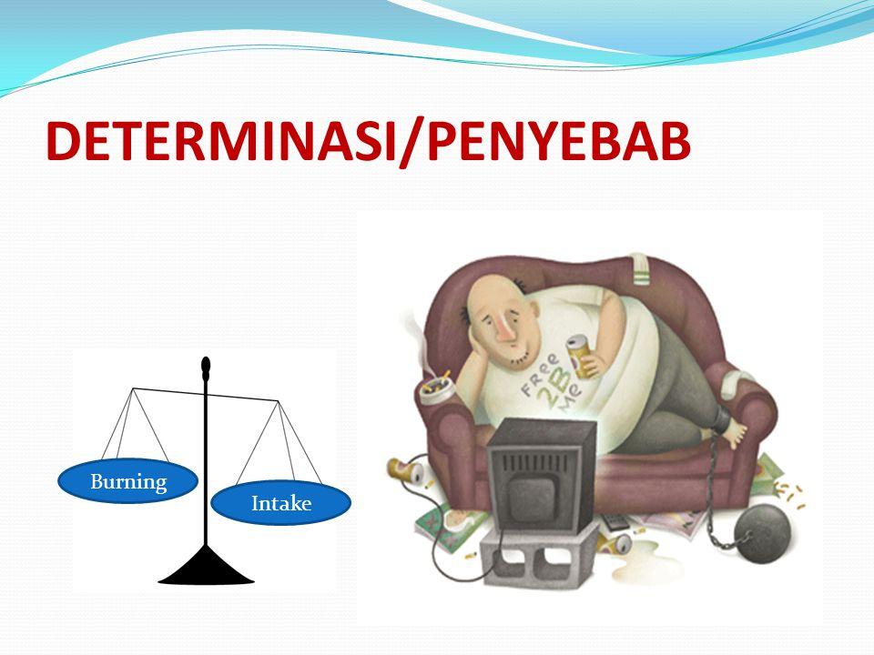 DETERMINASI/PENYEBAB