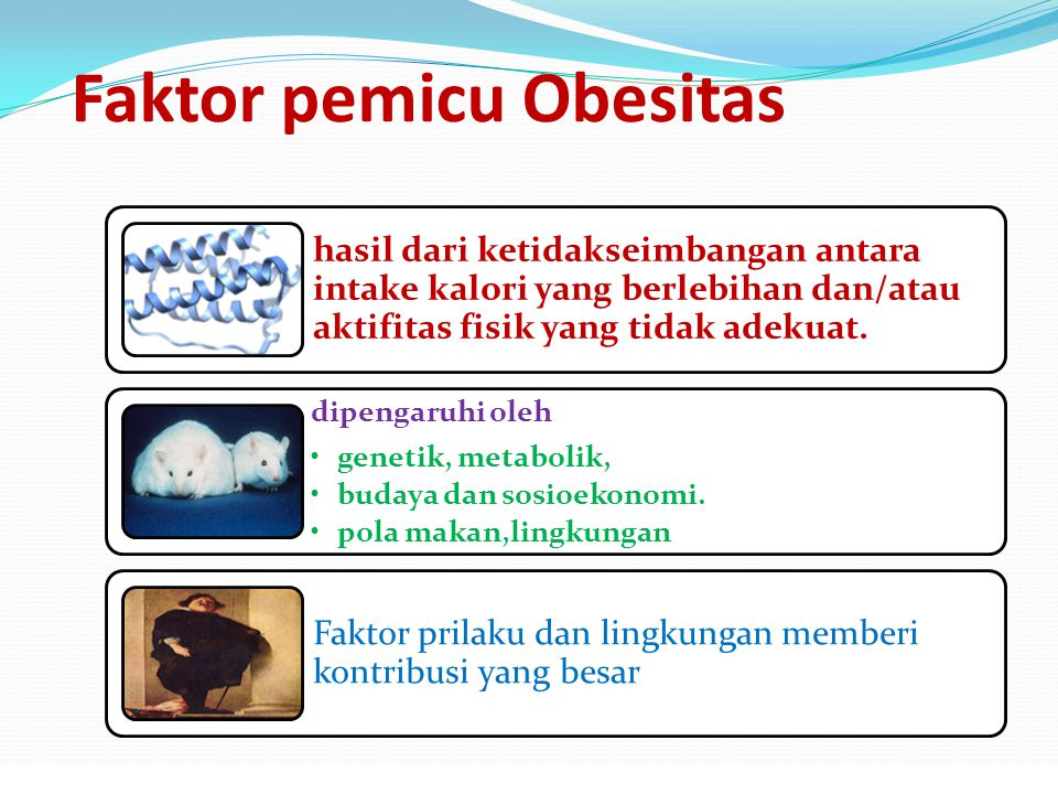 Faktor pemicu Obesitas