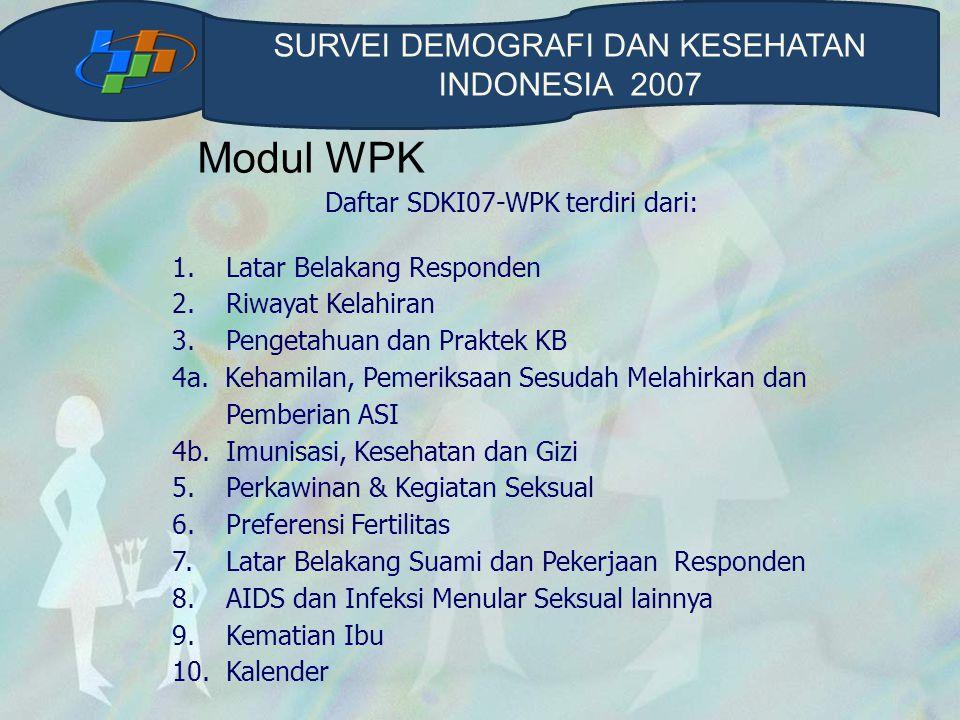Modul WPK SURVEI DEMOGRAFI DAN KESEHATAN INDONESIA 2007